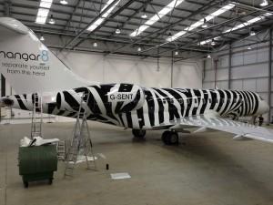 Plane Graphics